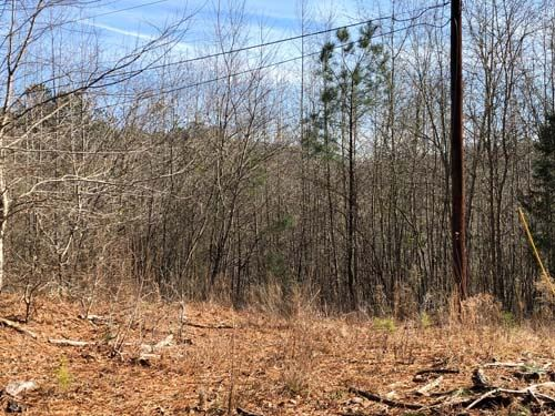 Auction, Property 1226 : McDonough : Rockdale County : Georgia