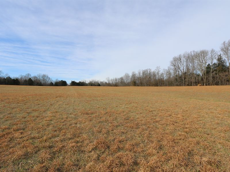 65 Acres In 2 Nice Deep Tracts : Sparta : White County : Tennessee