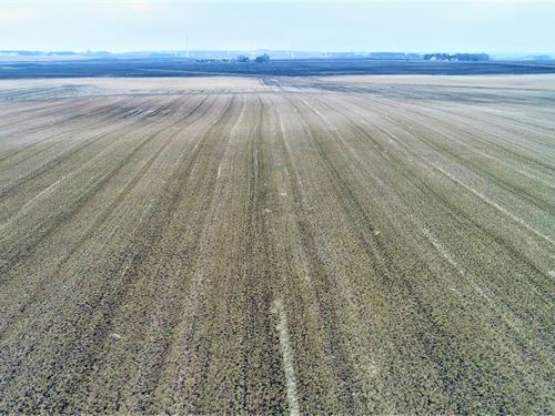 80 Acres in Murray Co, MN : Chandler : Murray County : Minnesota