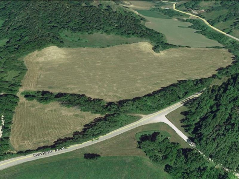 Swi Farmland Auction Crescent Hobby : Crescent : Pottawattamie County : Iowa