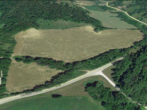 Swi Farmland Auction Crescent Hobby : Crescent : Pottawattamie County : Iowa