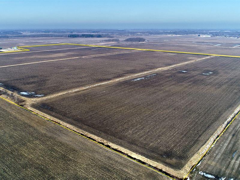 Land Auction In Jasper Co., Indiana : Demotte : Jasper County : Indiana