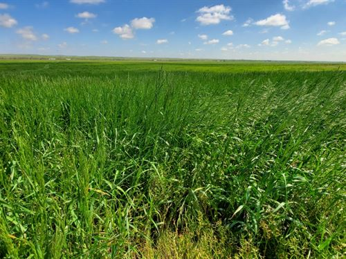 Ogallala 160 : Ogallala : Keith County : Nebraska