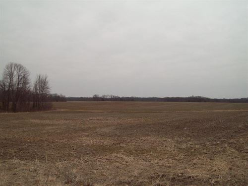 Online Only Farm Land Auction : Jonesburg : Warren County : Missouri