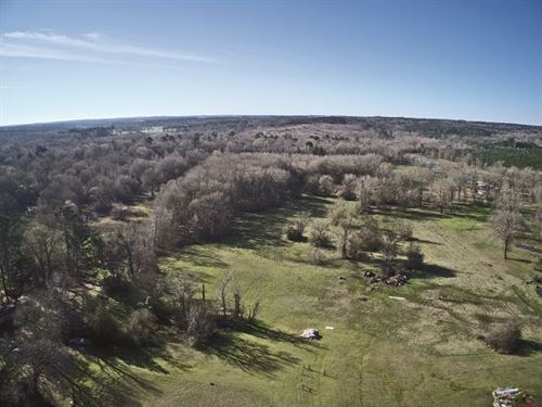 Recreation Land Auction : Hallsville : Harrison County : Texas