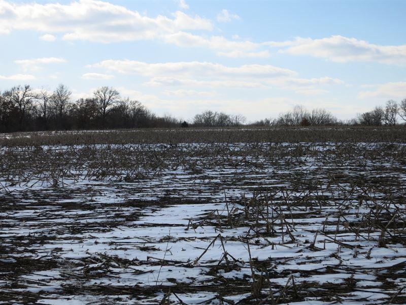 Daviess County Land Auction April : Jameson : Daviess County : Missouri