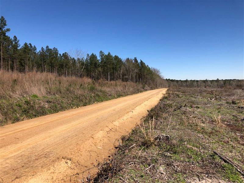 182 Acres From Billy Knight Estate : Soperton : Treutlen County : Georgia