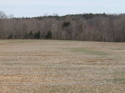 Crop Land, Hunting Land, Timberland : Bowling Green : Warren County : Kentucky