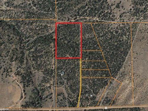 20 Acres Land Vanderwagen, New : Vanderwagen : McKinley County : New Mexico