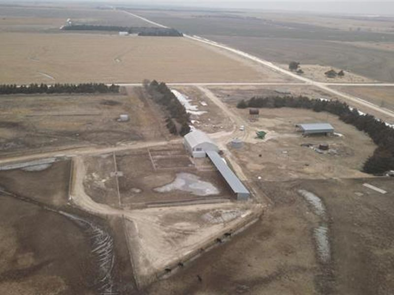 Sells Without Reserve This Tur : Natoma : Rooks County : Kansas