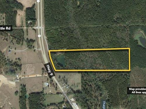4,130 sf Land, Approx 35.68Ac : Brantley : Crenshaw County : Alabama