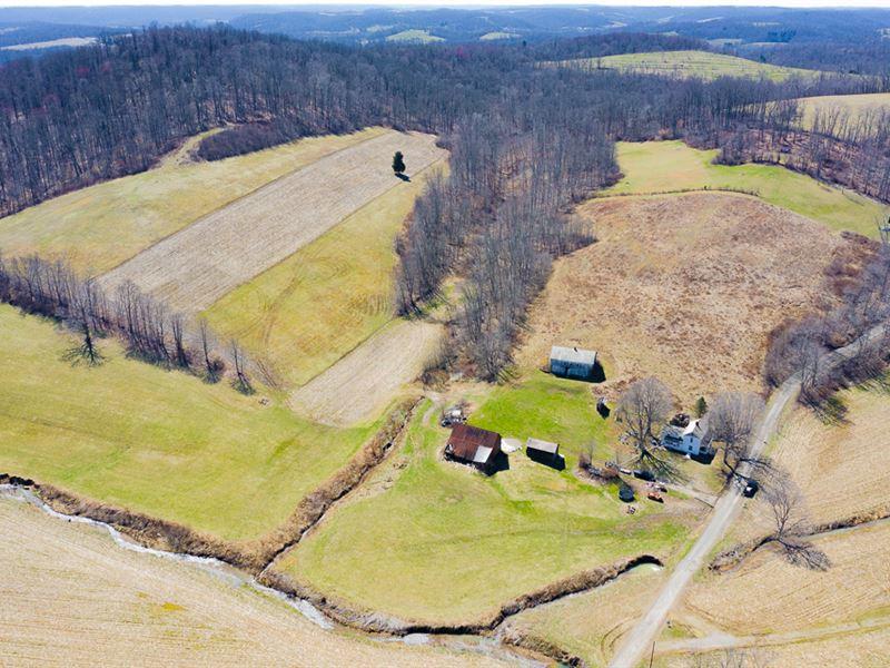 Tr 64B, 46 Acres : Dresden : Coshocton County : Ohio