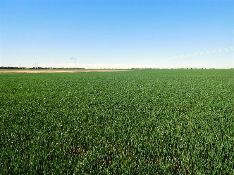 Caddo County Land Auction : Carnegie : Caddo County : Oklahoma