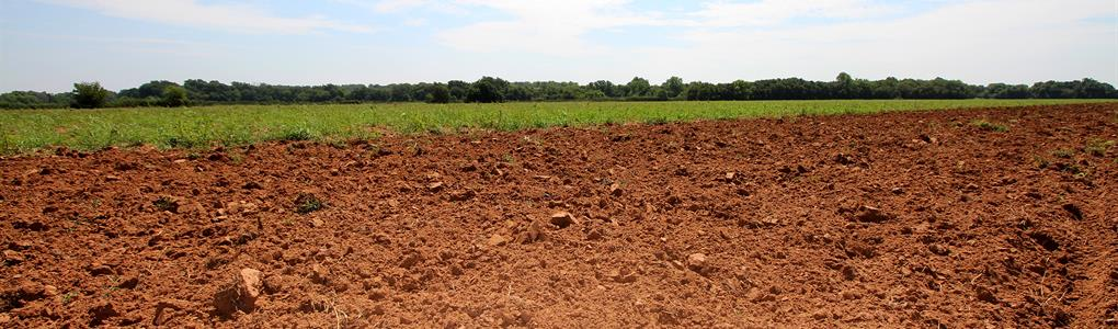 Land Producing Minerals Sealed Bid : Purdy : Garvin County : Oklahoma