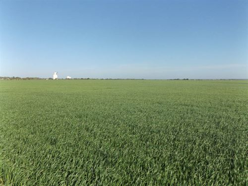 510 Acres Offered Multiple Tracts : Nash : Grant County : Oklahoma