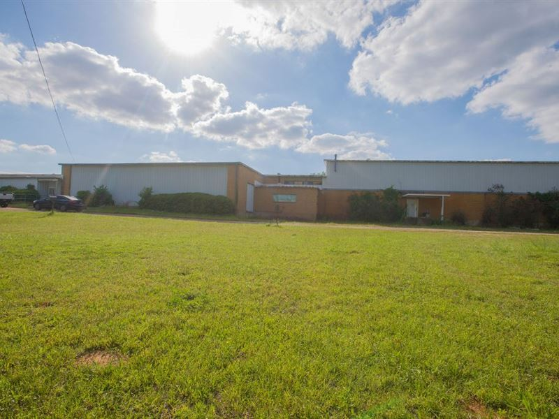 Absolute Auction Commercial : Palestine : Anderson County : Texas