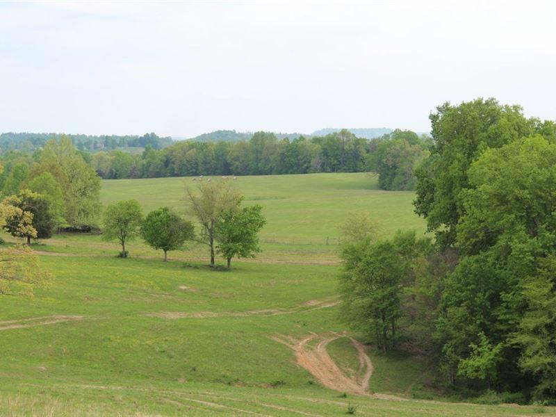 327 Acre Edmonson Kentucky Crop : Round Hill : Edmonson County : Kentucky