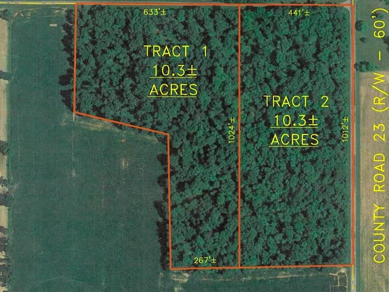 Re, Wooded Acreage Auction, June 8 : Attica : Seneca County : Ohio