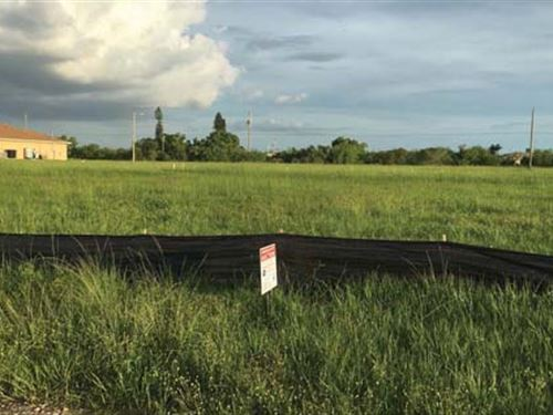 Residential Lot : Cape Coral : Lee County : Florida