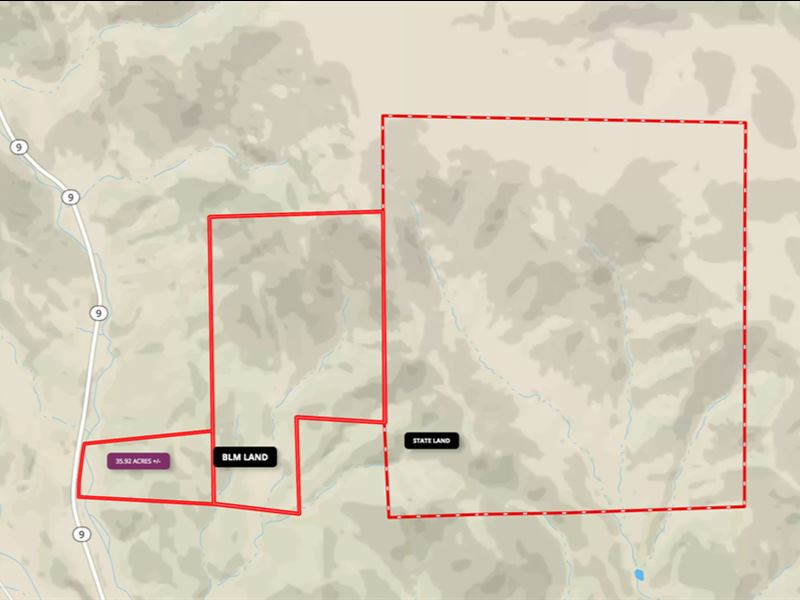 Wooded Mountain Land Online Auction : Canon City : Fremont County : Colorado