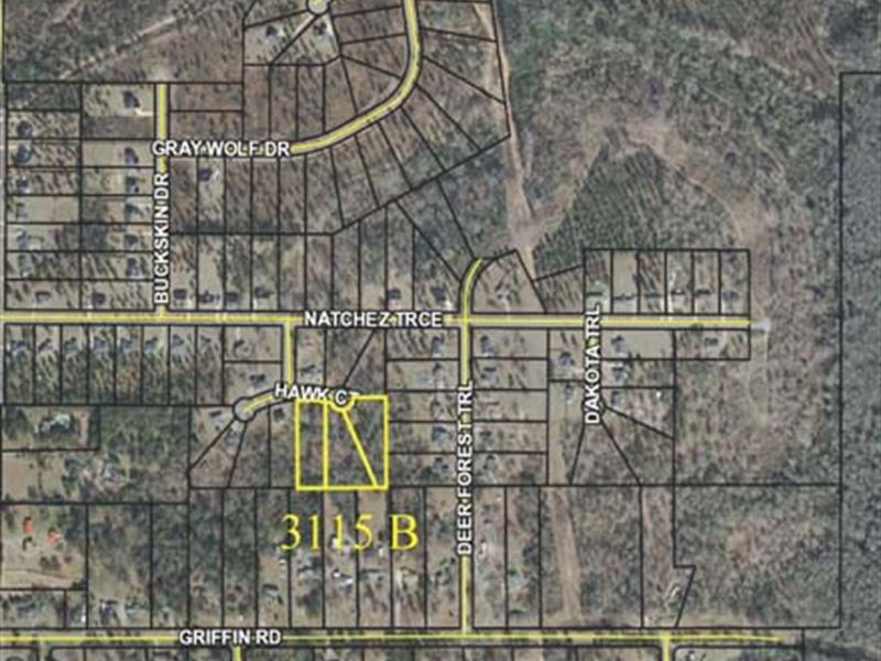 3 Residential Lots : Macon : Bibb County : Georgia