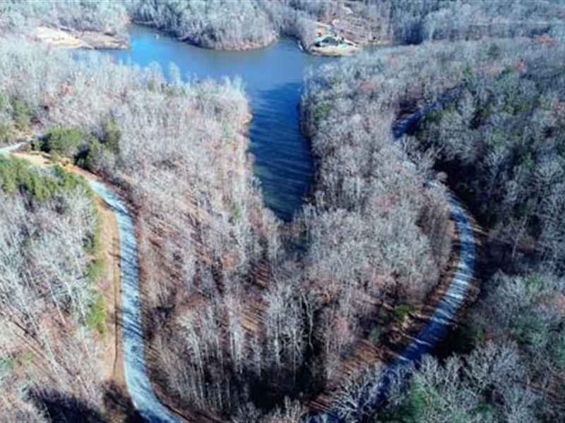 Residential Lake Lot : Cleveland : White County : Georgia