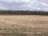 Major Land Auction In Illinois : Beaverville : Iroquois County : Illinois