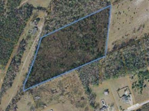 Agricultural Land : Loris : Horry County : South Carolina