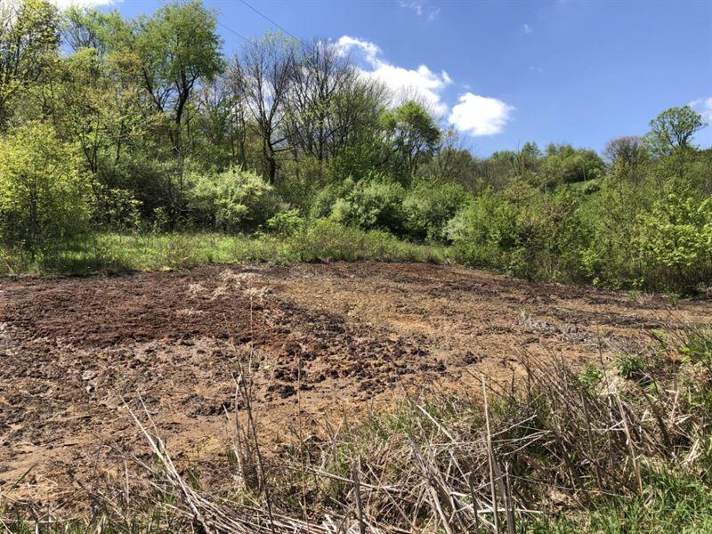 Fox Valley, 5 Acres : Gnadenhutten : Tuscarawas County : Ohio