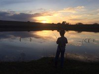 292.62 Acres Cabin,Grass & Hunting : Ninnekah : Grady County : Oklahoma