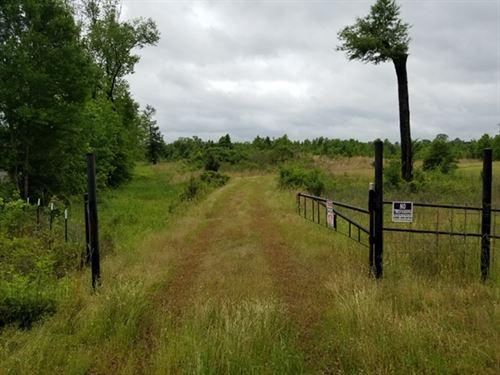 Texas Recreational Land Auction : Karnack : Harrison County : Texas