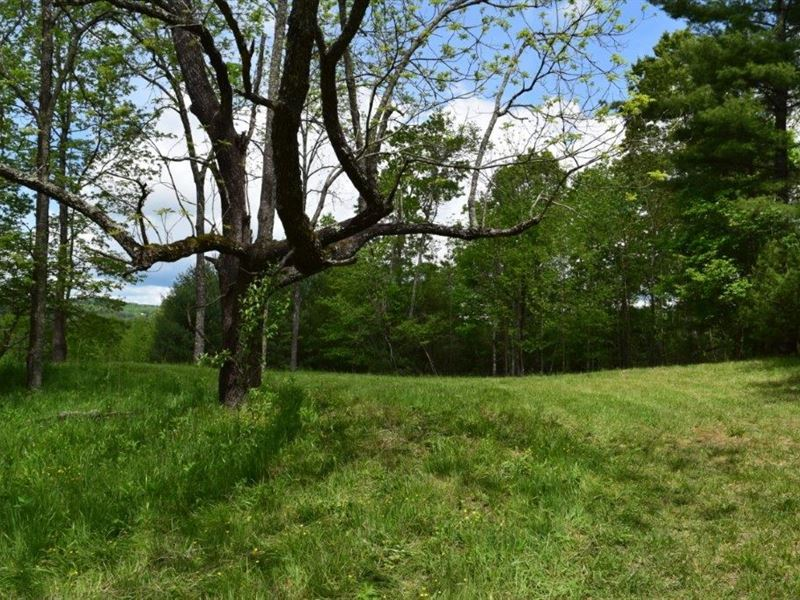 New River Property Galax VA Auction : Galax : Grayson County : Virginia