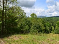 Recreational Land Galax VA Auction : Galax : Grayson County : Virginia