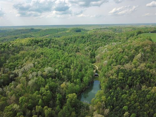 50 Acre Wooded Hideaway : Bowerstown : Harrison County : Ohio