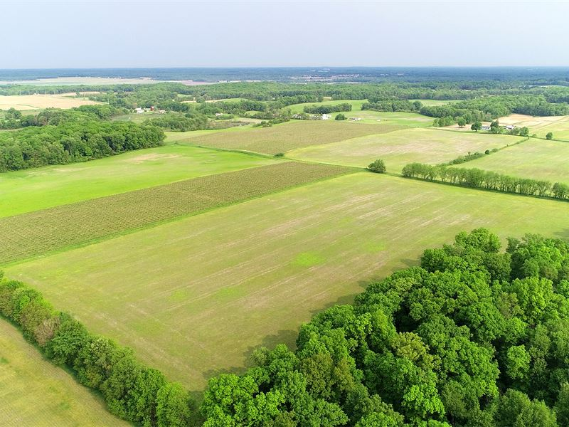 Land Auction In Michigan : Lawton : Van Buren County : Michigan