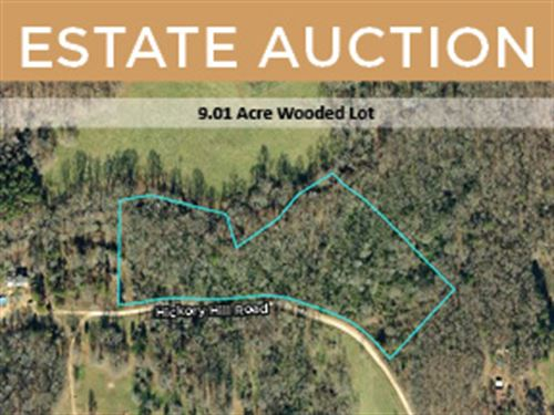 Estate Auction In Danielsville, Ga : Danielsville : Madison County : Georgia