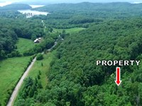 Wooded Tract Near Watts Bar Lake : Ten Mile : Roane County : Tennessee