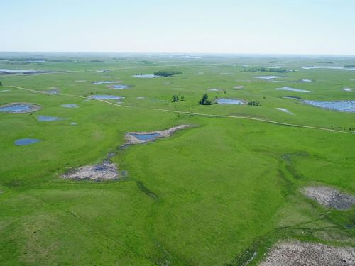 480 Acres Contiguous Pasture : Sisseton : Roberts County : South Dakota