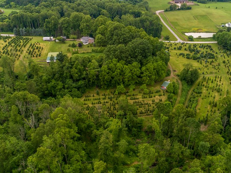 38+ Acre Evergreen Farm With Home : Canton : Stark County : Ohio