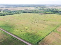 160 Acres Grassland, Hunting & Pond : Billings : Noble County : Oklahoma