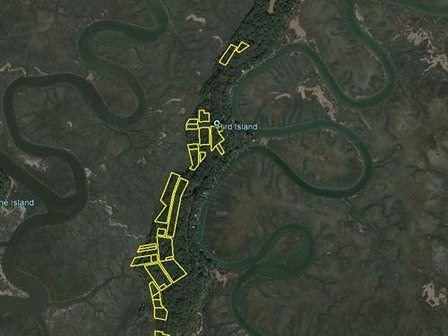 160 Lot Subdivision : Darien : McIntosh County : Georgia