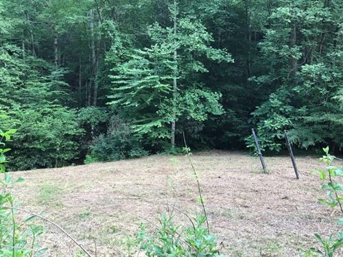 Building Lot Auction Wilkes County : Ferguson : Wilkes County : North Carolina