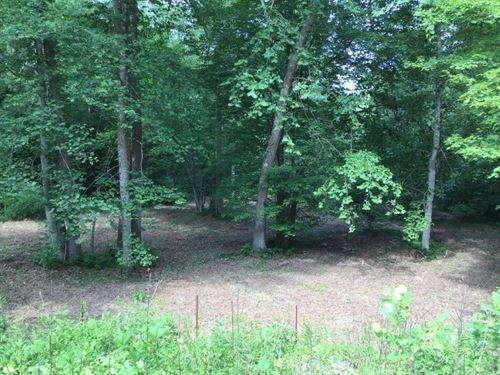 Land Auction in Wilkes County NC : Ferguson : Wilkes County : North Carolina