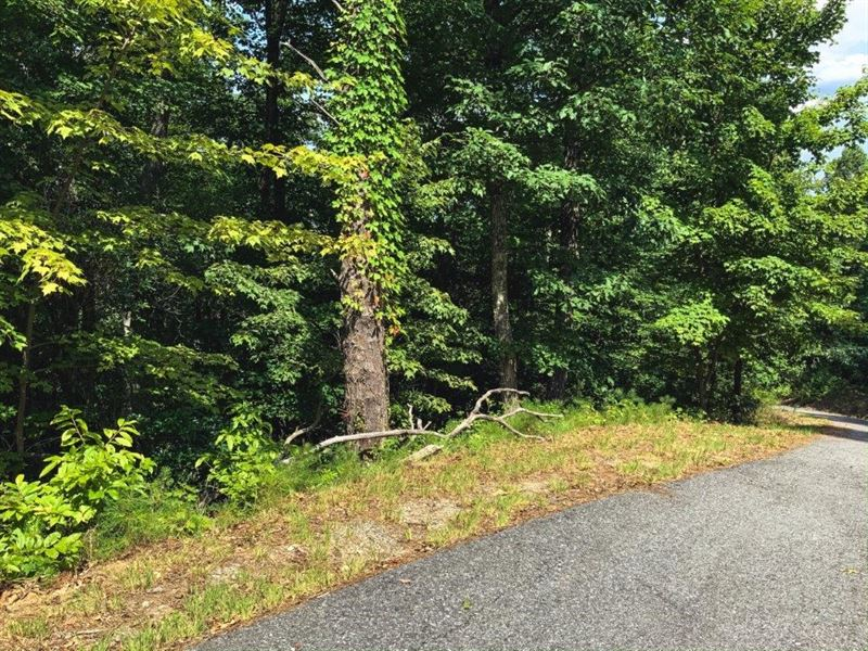 Cabin OR Country Home Site in NC : Ferguson : Wilkes County : North Carolina