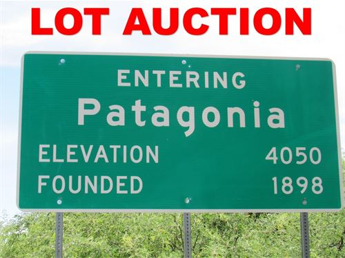 Online Auction 4.13 Acre : Patagonia : Santa Cruz County : Arizona
