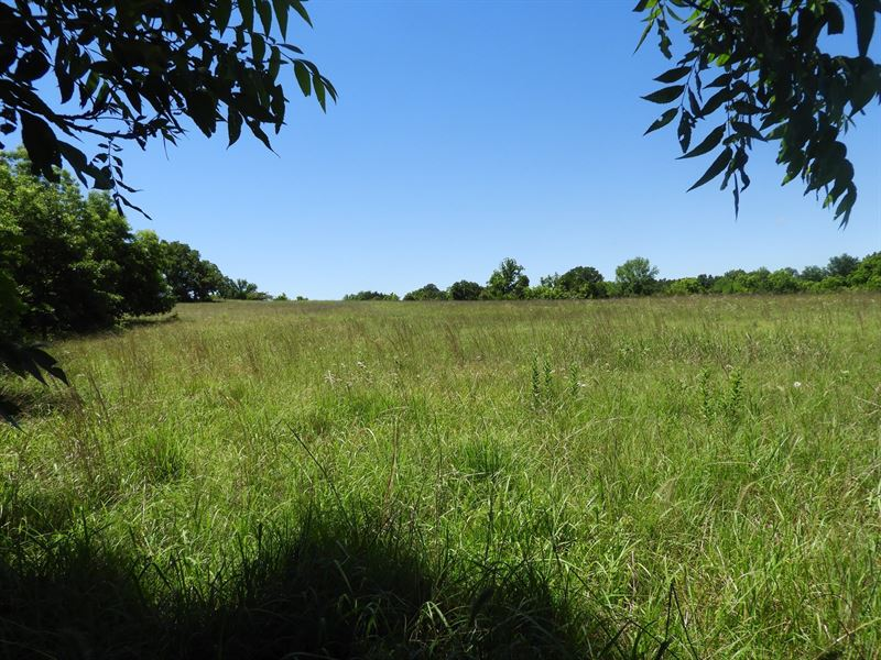 Real Estate Auction, Grassland : Chandler : Lincoln County : Oklahoma