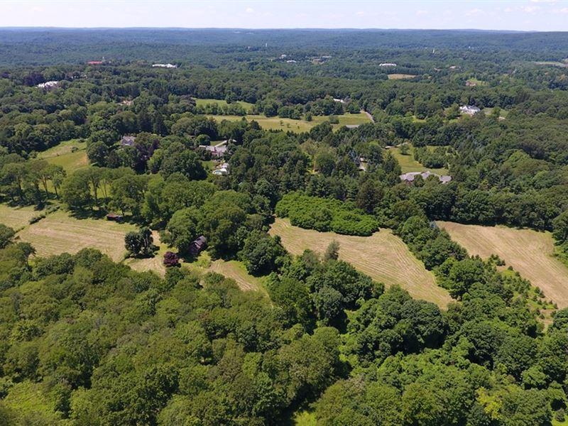 21.5+/- Acres In Mendham Borough Nj : Mendham : Morris County : New Jersey