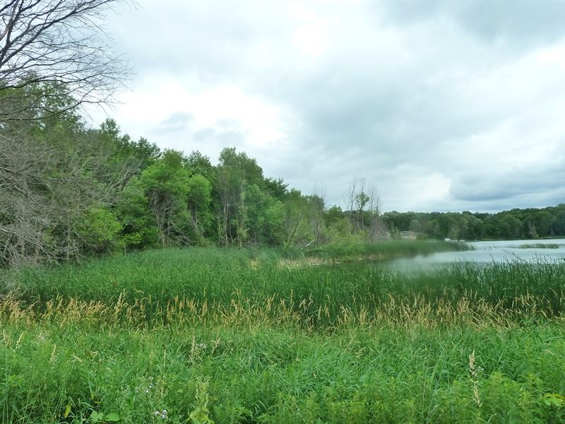 34+ Acres Land Indian Lake Maple : Maple Lake : Wright County : Minnesota