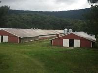 Former Poultry Farm, Lafayette, Ga : Lafayette : Walker County : Georgia