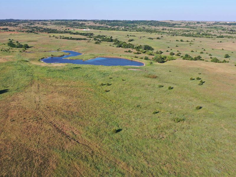 Cropland, Grassland, Hunting & More : Medford : Grant County : Oklahoma